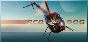 Red Dog Helicopters BioTech Consulting Orlando